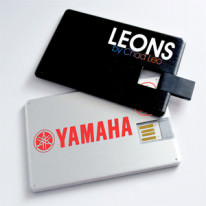 Memoria USB Tarjeta USB-04001