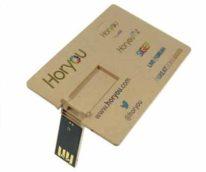 Memoria USB Tarjeta Ecológica